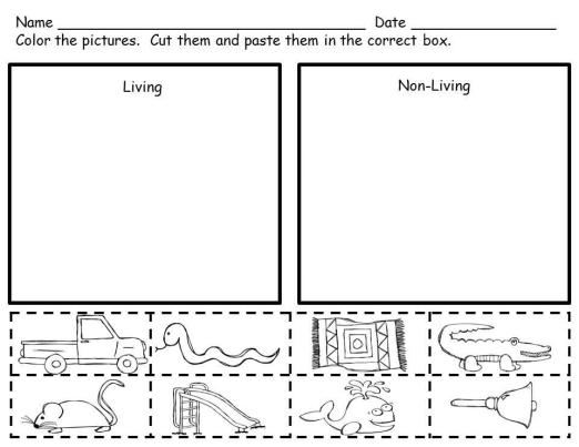 living and non living activity sort worksheets. Black Bedroom Furniture Sets. Home Design Ideas