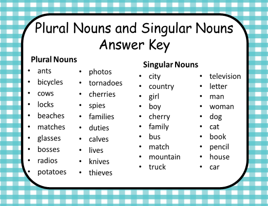 Singular and Plural Nouns - Bunnies