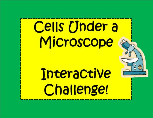 Under a Microscope Interactive Slideshow