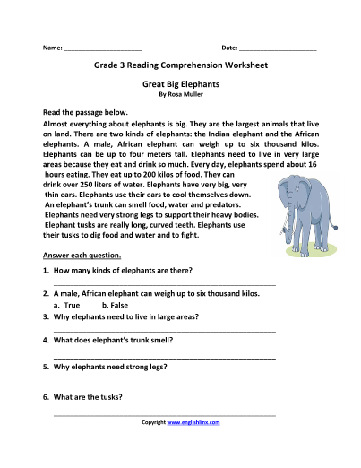 3rd Grade Reading Worksheets I TeacherSherpa