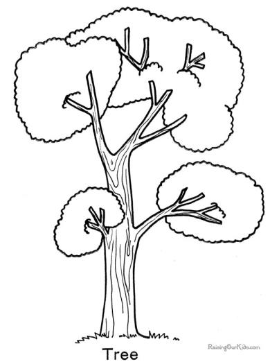 Top 25 Tree Coloring Pages For Your Little Ones | 522x403
