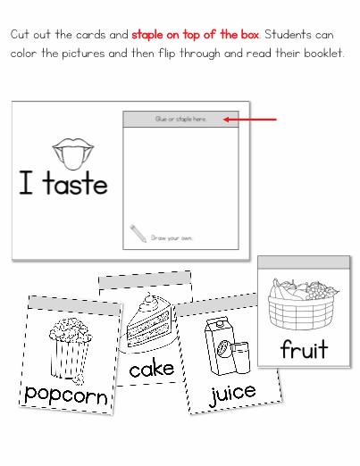 5 Senses Taste Flip Book